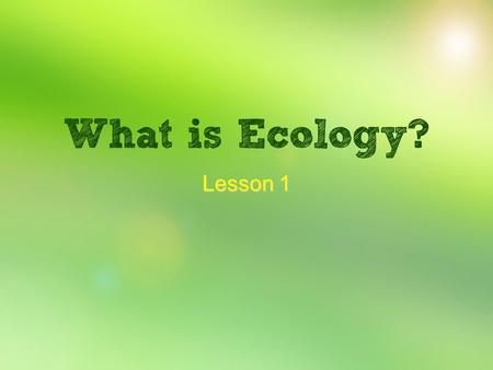 Lesson 1 How living things interact with each other and their environment. New terms: ecology organism habitat.