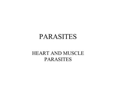 PARASITES HEART AND MUSCLE PARASITES. Taenia solium: life cycle.