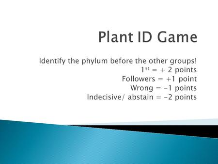 Identify the phylum before the other groups! 1 st = + 2 points Followers = +1 point Wrong = -1 points Indecisive/ abstain = -2 points.