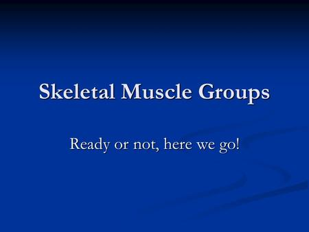Skeletal Muscle Groups