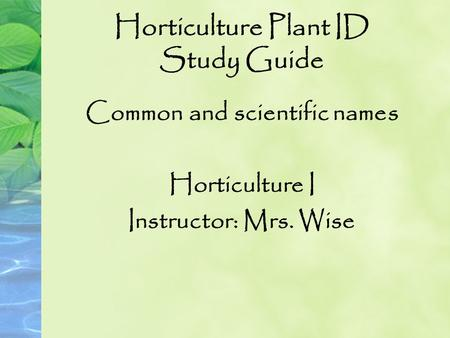Horticulture Plant ID Study Guide Common and scientific names Horticulture I Instructor: Mrs. Wise.