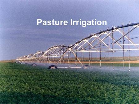 Pasture Irrigation. Irrigated Pastures l Maximum production from irrigated pastures requires timely irrigation and the exclusion of livestock when the.