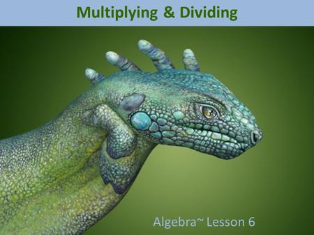 Multiplying & Dividing Algebra~ Lesson 6 Remember Addition and Subtraction? Kinda the same idea…