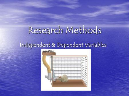 Research Methods Independent & Dependent Variables.