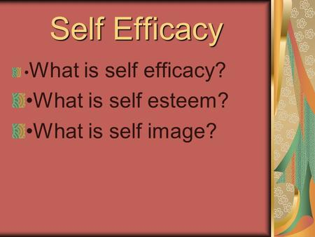 Self Efficacy What is self efficacy? What is self esteem? What is self image?