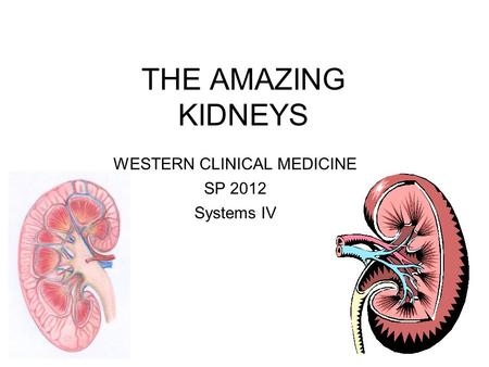 THE AMAZING KIDNEYS WESTERN CLINICAL MEDICINE SP 2012 Systems IV.
