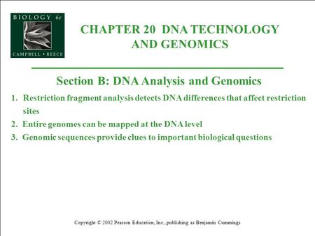 CHAPTER 20 DNA TECHNOLOGY AND GENOMICS Copyright © 2002 Pearson Education, Inc., publishing as Benjamin Cummings Section B: DNA Analysis and Genomics 1.Restriction.