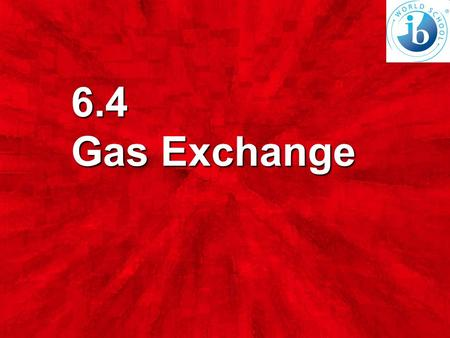 6.4 Gas Exchange. List the characteristics of alveoli that permit efficient gas exchange. (4 marks)