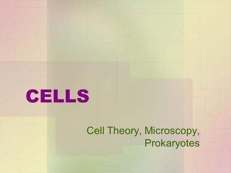 CELLS Cell Theory, Microscopy, Prokaryotes. CELL THEORY 1.All living things are composed of cells and cell products. 2.New cells are formed only by the.