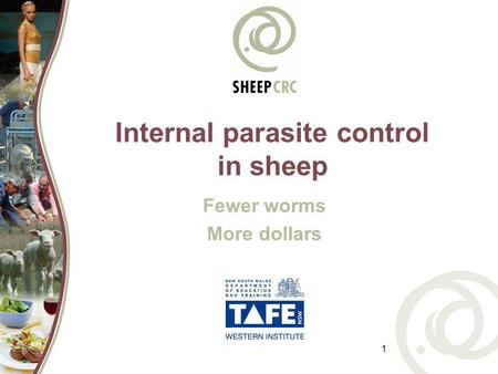 1 Internal parasite control in sheep Fewer worms More dollars.