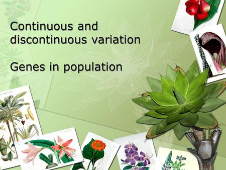 Continuous and discontinuous variation Genes in population.