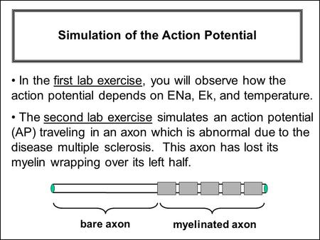 The second lab exercise simulates an action potential (AP) traveling in an axon which is abnormal due to the disease multiple sclerosis. This axon has.