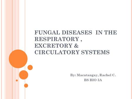 FUNGAL DISEASES IN THE RESPIRATORY, EXCRETORY & CIRCULATORY SYSTEMS By: Macatangay, Rachel C. BS BIO 3A.