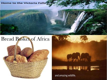 Bread Basket of Africa. Hint Any Guesses.