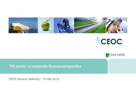 TIC sector: a corporate finance perspective CEOC General Assembly - 14 May 2012.