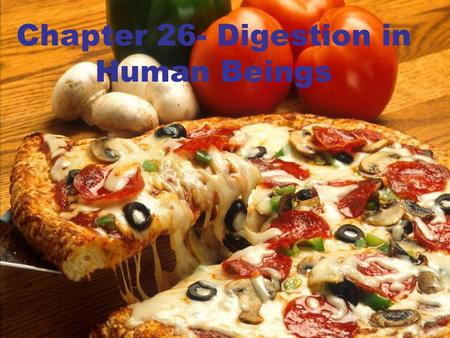 Chapter 26- Digestion in Human Beings. 26.1 Why We Need Food? We need food to: oprovide us with energy for our daily activities like walking, and to maintain.