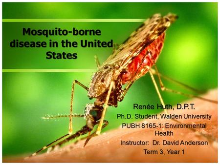 Mosquito-borne disease in the United States Renée Huth, D.P.T. Ph.D. Student, Walden University PUBH 8165-1: Environmental Health Instructor: Dr. David.