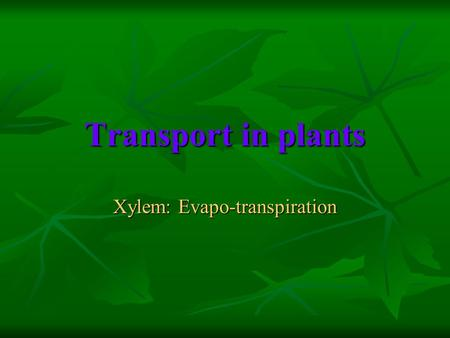 Transport in plants Xylem: Evapo-transpiration. Objectives Describe the structure of xylem vessels & sieve tubes. Describe the structure of xylem vessels.