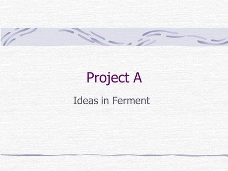 Project A Ideas in Ferment. Project A Founded in 1990 by Jim Teece and Dena Matthews Known for Site-in-a-Box Internet Solutions Clients include Asante,