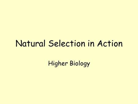 Natural Selection in Action Higher Biology Natural Selection in Action Most mutations produce inferior versions of original gene Some mutations allow.