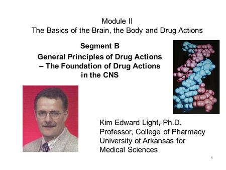 1 Module II The Basics of the Brain, the Body and Drug Actions Segment B General Principles of Drug Actions – The Foundation of Drug Actions in the CNS.