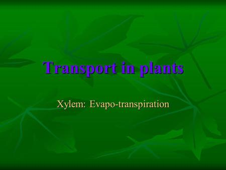 Transport in plants Xylem: Evapo-transpiration. Why do plants need a transport system? To transport food and water throughout the plant from roots to.