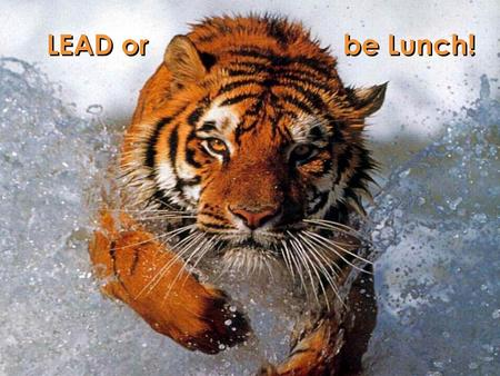 Lead or be lunch! LEAD or be Lunch!. Lead or be lunch! Our new team motto … This will be the motto driving our team for the months and years ahead All.