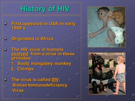 History of HIV History of HIV First appeared in USA in early 1980s Originated in Africa The HIV virus in humans evolved from a virus in these primates: