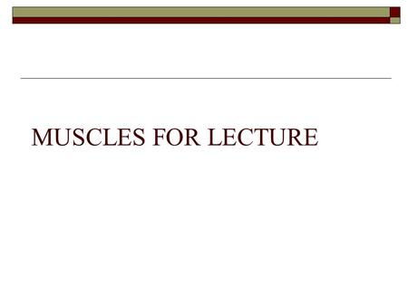 MUSCLES FOR LECTURE.