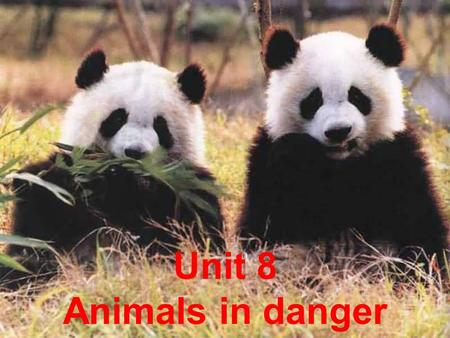 Unit 8 Animals in danger. W____ Zhenhui and her c_____ were playing at their grandmothers house one day,they s______ heard a loud c____ at the window.They.