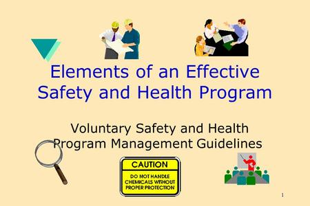 1 Elements of an Effective Safety and Health Program Voluntary Safety and Health Program Management Guidelines.