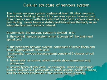 Cellular structure of nervous system The human nervous system contains at least 10 billion neurons. These basic building blocks of the nervous system have.