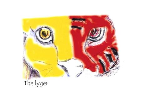 The lyger. The year of the lyger Before you opens a visionary journey through Art of the Word of the Lord for the year 2007. Follow the Lyger tracks…………….