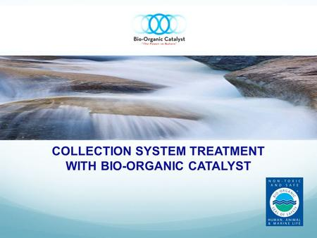 COLLECTION SYSTEM TREATMENT WITH BIO-ORGANIC CATALYST.
