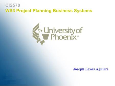 WS3 Project Planning Business Systems