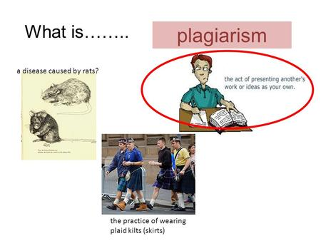 What is…….. a disease caused by rats? the practice of wearing plaid kilts (skirts) plagiarism.