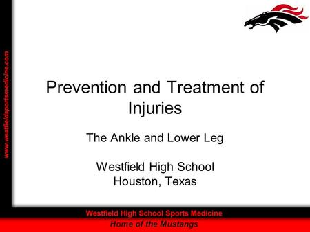 Prevention and Treatment of Injuries The Ankle and Lower Leg Westfield High School Houston, Texas.