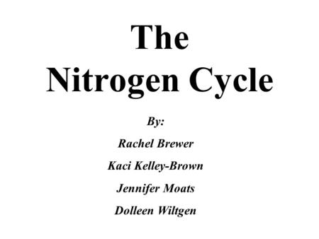 The Nitrogen Cycle By: Rachel Brewer Kaci Kelley-Brown Jennifer Moats Dolleen Wiltgen.