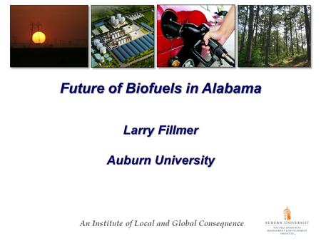 An Institute of Local and Global Consequence Future of Biofuels in Alabama Larry Fillmer Auburn University.