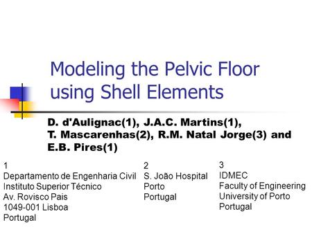 Modeling the Pelvic Floor using Shell Elements 1 Departamento de Engenharia Civil Instituto Superior Técnico Av. Rovisco Pais 1049-001 Lisboa Portugal.