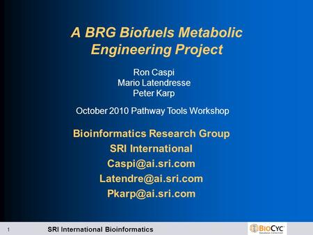 SRI International Bioinformatics 1 A BRG Biofuels Metabolic Engineering Project Bioinformatics Research Group SRI International