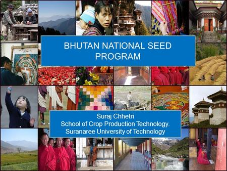 BHUTAN NATIONAL SEED PROGRAM Suraj Chhetri School of Crop Production Technology. Suranaree University of Technology.