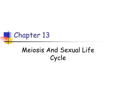 Meiosis And Sexual Life Cycle
