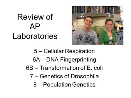 Review of AP Laboratories 5 – Cellular Respiration 6A – DNA Fingerprinting 6B – Transformation of E. coli 7 – Genetics of Drosophila 8 – Population Genetics.