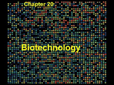 Copyright © 2005 Pearson Education, Inc. publishing as Benjamin Cummings Figure 20.1 Biotechnology Chapter 20.