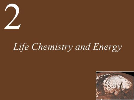 Life Chemistry and Energy 2. Chapter 2 Life Chemistry and Energy Key Concepts 2.1 Atomic Structure Is the Basis for Lifes Chemistry 2.2 Atoms Interact.