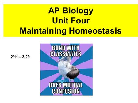 AP Biology Unit Four Maintaining Homeostasis 2/11 – 3/29.