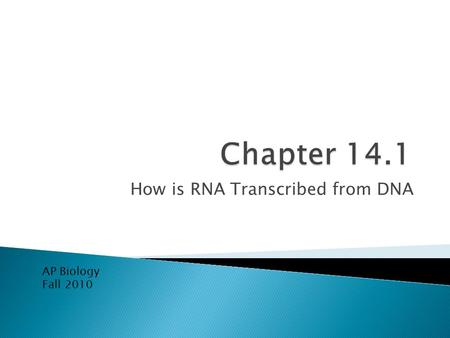 How is RNA Transcribed from DNA AP Biology Fall 2010.