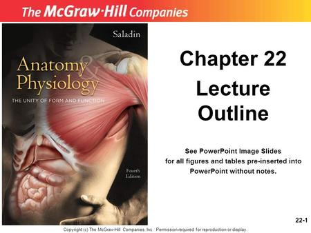 22-1 Chapter 22 Lecture Outline See PowerPoint Image Slides for all figures and tables pre-inserted into PowerPoint without notes. Copyright (c) The McGraw-Hill.