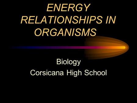 ENERGY RELATIONSHIPS IN ORGANISMS Biology Corsicana High School.